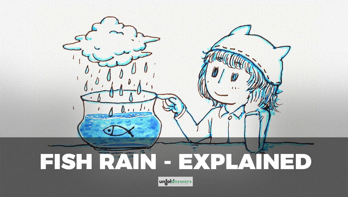 Rain of Animals - Fish Rain